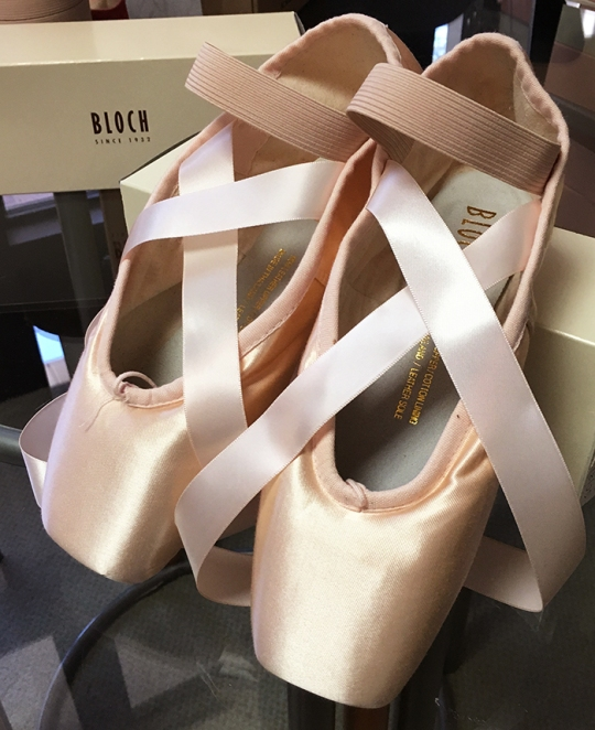 pointeshoes13
